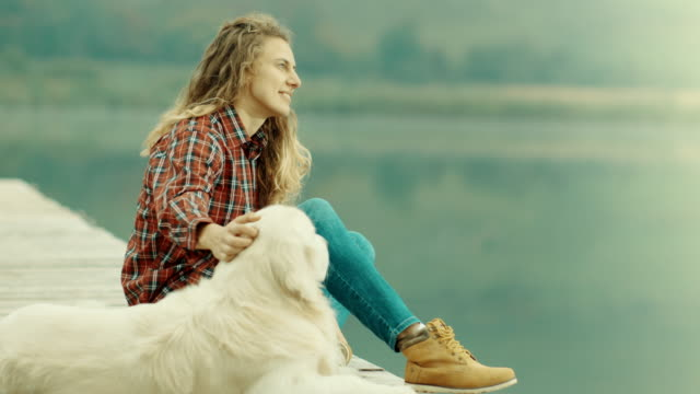 woman and dog sitting on pier and looking at distance - pier stock videos & royalty-free footage