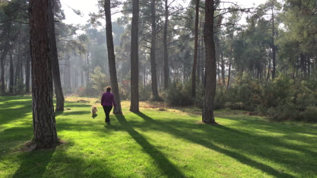 Woman and Dog Walking in Forest