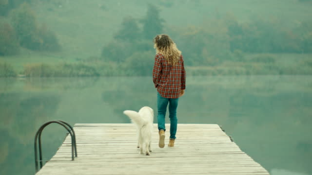 woman and dog walking on the pier at lake - pier stock videos & royalty-free footage