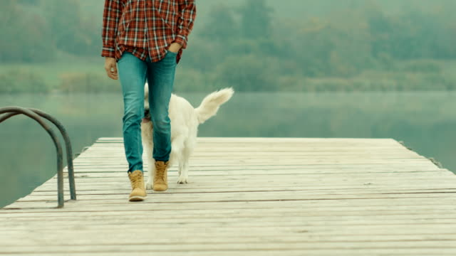 woman and dog walking on the pier at lake - retriever stock videos and b-roll footage