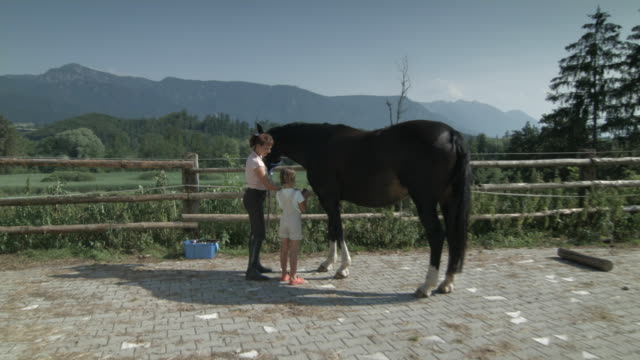 Woman and girl grooming horse outdoors