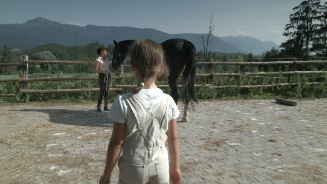 woman and girl grooming horse outdoors - bib overalls stock videos and b-roll footage