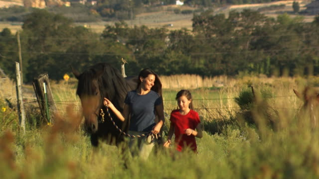 vídeos de stock e filmes b-roll de woman and girl walking a horse - veja outros clipes desta filmagem 1139
