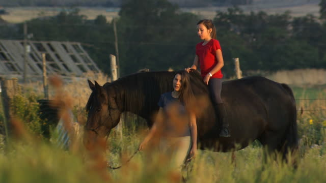 woman and girl walking a horse - see other clips from this shoot 1139 stock videos & royalty-free footage