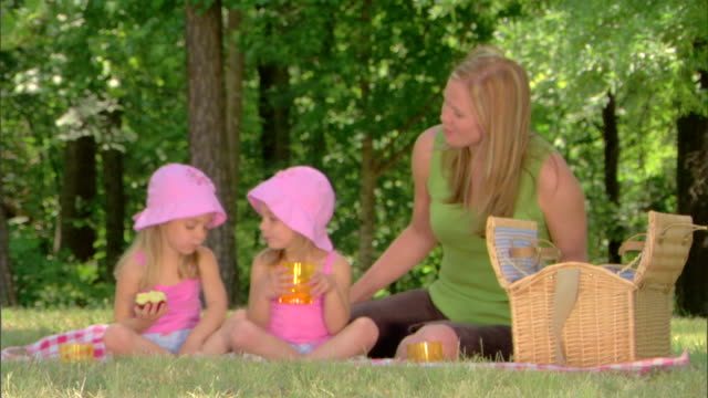 woman and girls picnicking - see other clips from this shoot 1428 stock videos & royalty-free footage