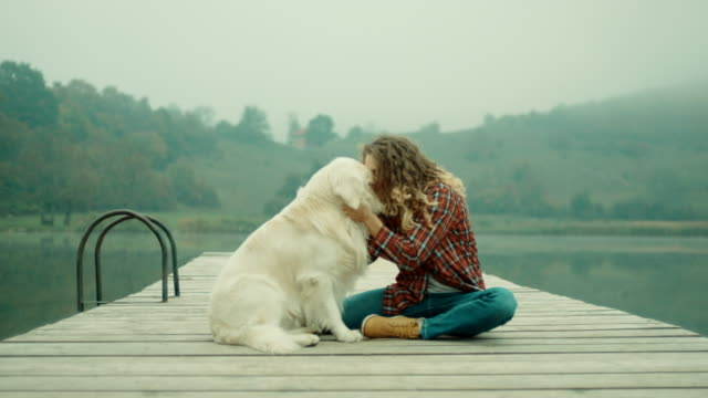 woman and her best friend sitting on pier at lake - pier stock videos & royalty-free footage