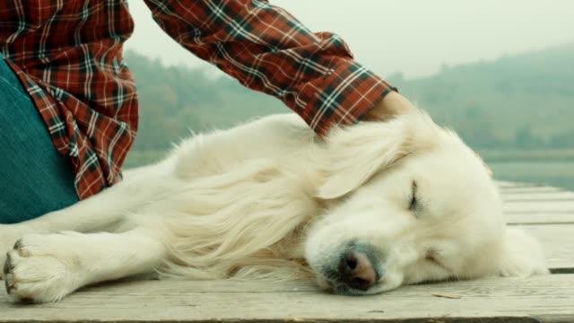 stockvideo's en b-roll-footage met vrouw en haar hond genieten van in tijd doorbrengen samen op pier in lake - aaien