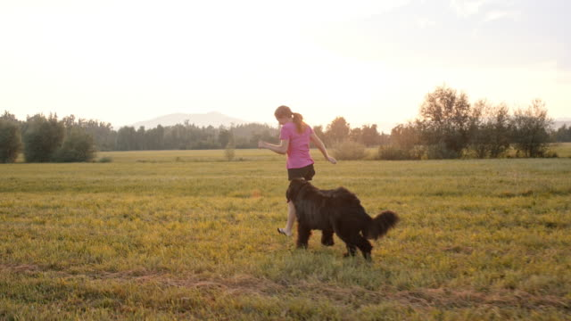 SLO MO Woman and her dog running in the meadow at sunset