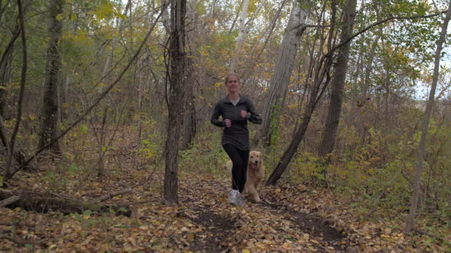 woman and her dog running through forest - golden retriever stock videos and b-roll footage