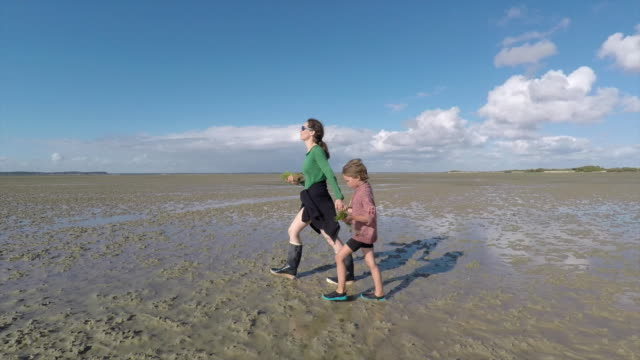 woman and her son walking on beach at low tide, arcachon bay - profile stock-videos und b-roll-filmmaterial
