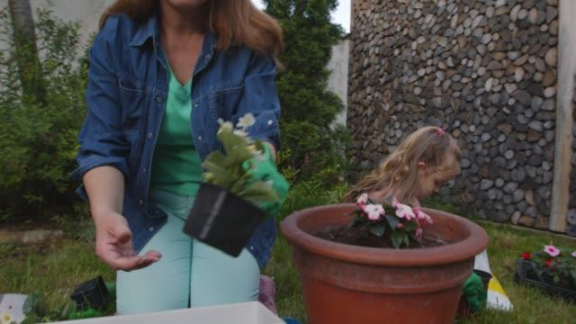 vidéos et rushes de femme et sa fille en bas âge en pot des fleurs dans leur cour arrière ensemble - gant de jardinage