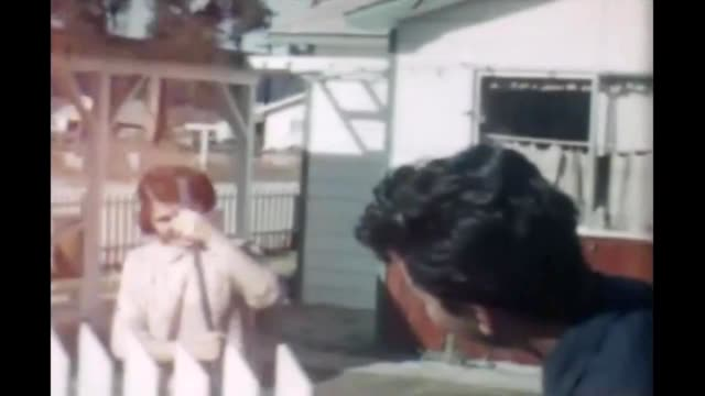 1965 woman and landscape - picket fence stock videos & royalty-free footage