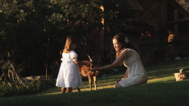 stockvideo's en b-roll-footage met woman and little girl feeding a fawn - reekalf