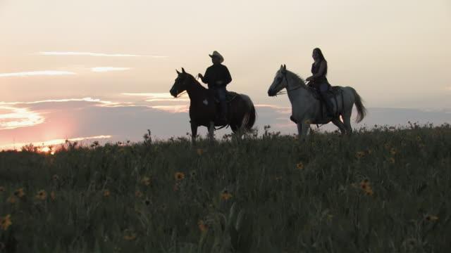 ws, pan, woman and man riding horses through flowering meadow at sunset, usa - ウェスタン点の映像素材/bロール