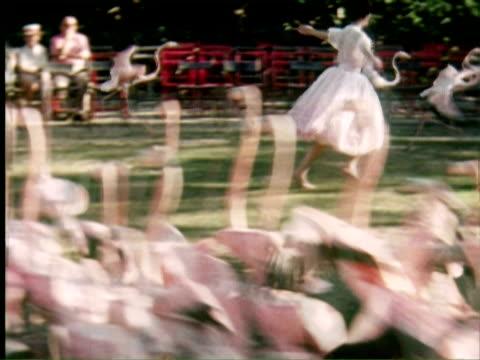 MS Woman and man runing behind flamingo in park, Nassau, New Providence, Bahamas / AUDIO