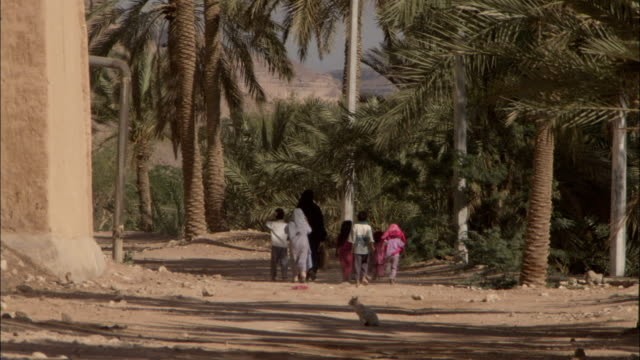 a woman and several children walk along a dirt path under a grove of palm trees. - yemen stock videos and b-roll footage