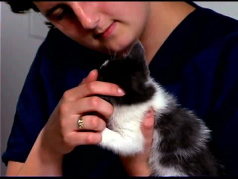 stockvideo's en b-roll-footage met woman and veterinarian playing with kitten - alleen één mid volwassen vrouw
