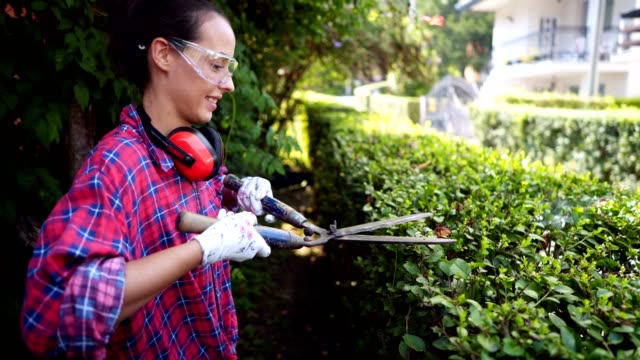 woman arranging hedge in the garden - pruning stock videos & royalty-free footage
