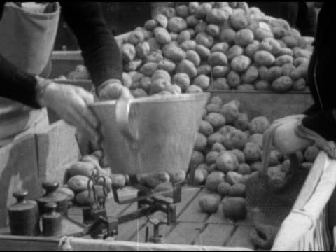 woman at potato stand male counting weighing potatoes in bucket on scale sign for price of potatoes male pouring potatoes into bag vs housewives... - 1950 stock-videos und b-roll-filmmaterial