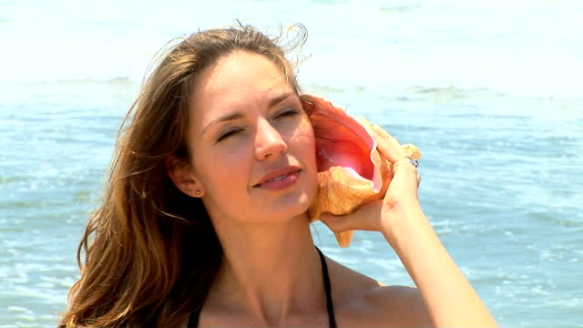 woman at the beach - seashell stock videos & royalty-free footage