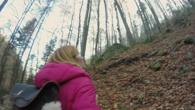 ms woman backpacking,hiking in remote autumn woods - telecamera traballante video stock e b–roll
