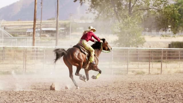 woman barrel racing at rodeo. - all horse riding stock videos & royalty-free footage
