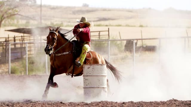 woman barrel racing at rodeo. - rodeo stock videos & royalty-free footage