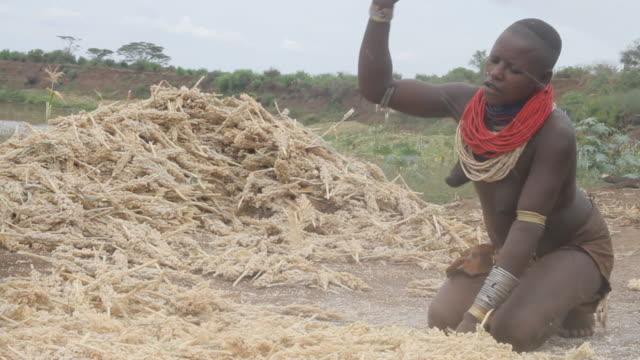 vídeos y material grabado en eventos de stock de woman beating corn - una mujer de mediana edad solamente