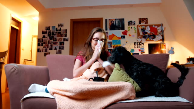 Woman blowing nose while dog wants to play
