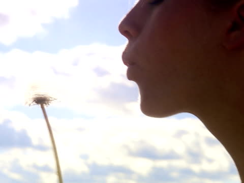 a woman blowing on a dandelion sweden. - one mid adult woman only stock videos & royalty-free footage