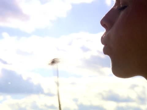 a woman blowing on a dandelion sweden. - 吹く点の映像素材/bロール