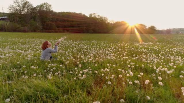 vídeos de stock, filmes e b-roll de aerial slo mo mulher soprar as sementes-leão num prado - soprando