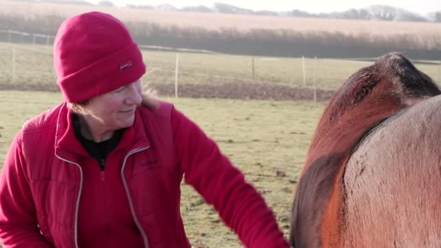 cu woman brushing horse's coat in winter / helland, bodmin, cornwall, united kingdom - winter coat stock videos & royalty-free footage