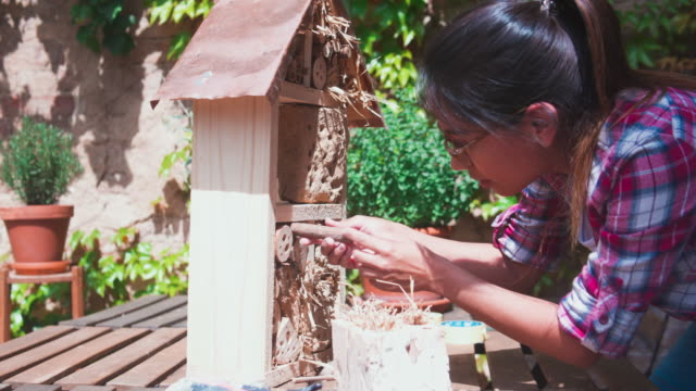 woman building a diy insect hotel. - birdhouse stock videos & royalty-free footage