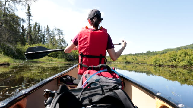 woman canoeing at parc national des grands-jardins, quebec, canada - passion stock videos & royalty-free footage