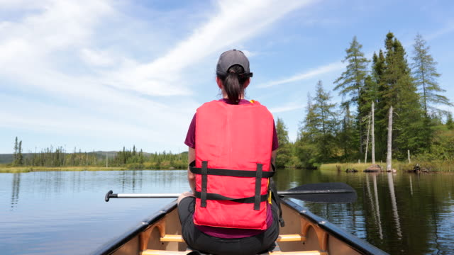 woman canoeing at parc national des grands-jardins, quebec, canada - parc national stock videos & royalty-free footage