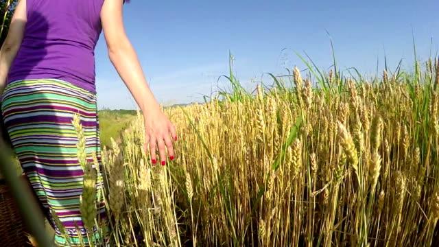 Frau streicheln Weizen