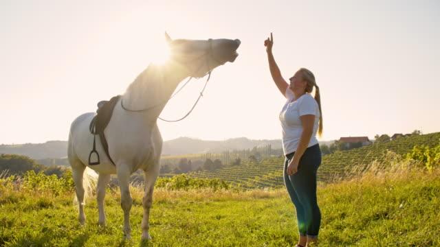 Femme caressant au ralenti du cheval blanc dans la nature