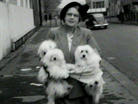 A woman carries three white dogs as she walks along a road 1954
