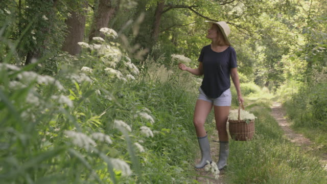 DS Woman carrying a basket full of elderberry's blossoms