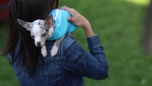 stockvideo's en b-roll-footage met vrouw met haar chihuahua hond in haar armen - alleen één mid volwassen vrouw