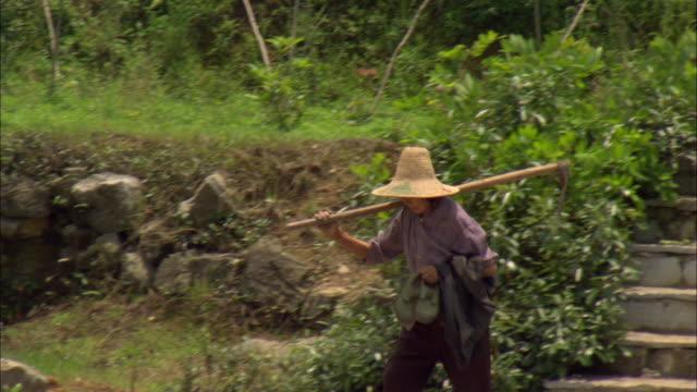 vídeos de stock e filmes b-roll de ms pan woman carrying hoe on back and shoes in hand walking down path, guilin, guangxi zhuang autonomous region, china - fotografia de três quartos