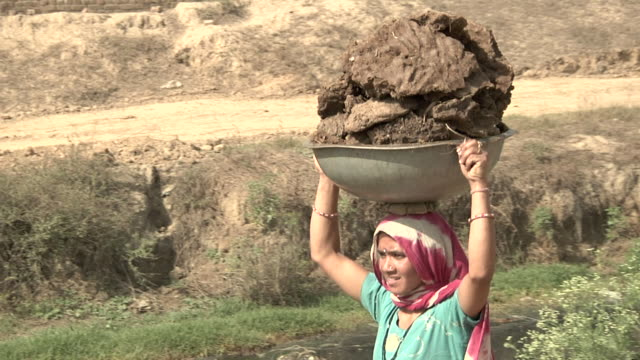 Woman carrying manure to be burned into fuel