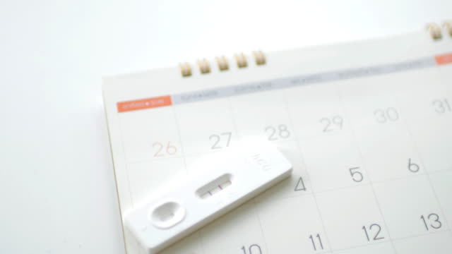woman checking calendar with pregnancy test - personal organiser stock videos and b-roll footage