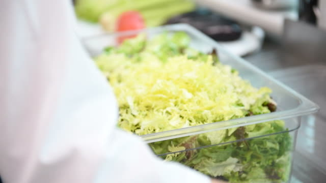 Woman chef hands tearing lettuce
