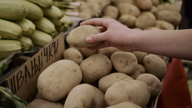 a woman choosing raw farm organic potatoes in the market.  - stock video - shopping bag stock videos & royalty-free footage