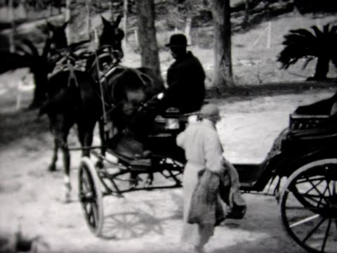 1932 woman climbing into horse-drawn carriage - horsedrawn stock videos & royalty-free footage