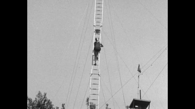 woman climbing ladder to top of diving tower / ws woman standing at top of tower with small round pool below / woman diving into pool / slow motion... - ladder stock videos & royalty-free footage