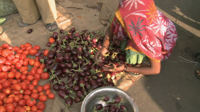 WS A woman collecting eggplant off ground at an open air market / Rajkot, Gujarat, India