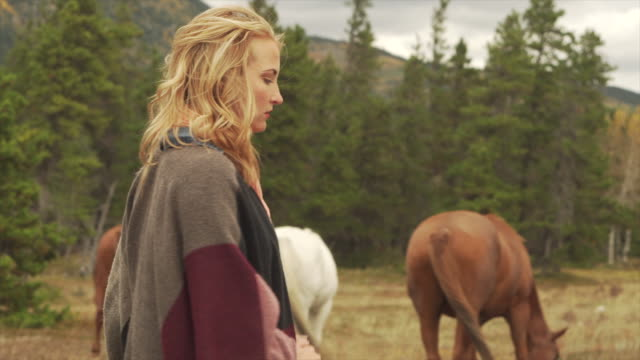 woman connects with horses, in mountain meadow - women doing farm animals stock videos and b-roll footage